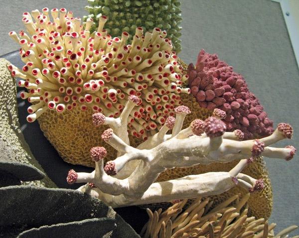 art ocean et ceramique par Courtney Mattison